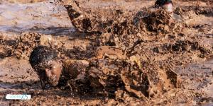 Samen in de modder